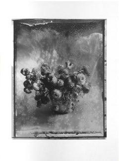 Nevermind, Framed Gelatin Silver Print, 1989