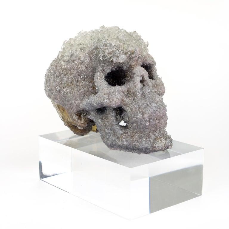 Crystal Skull Sculpture, Sarah Raskey For Sale 1