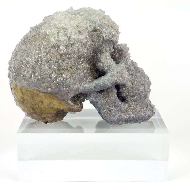 Crystal Skull Sculpture, Sarah Raskey For Sale 2