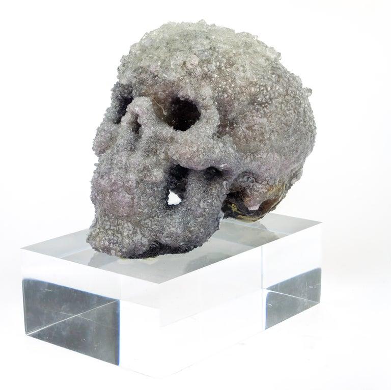 Crystal Skull Sculpture, Sarah Raskey For Sale 5