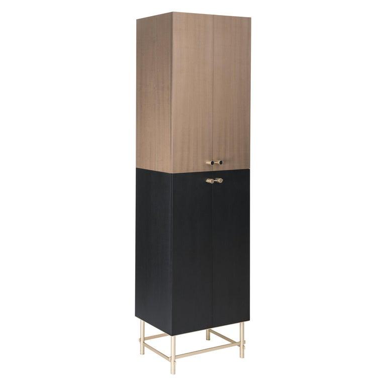 Sarita 2 Colors Luxury Cabinet Metal Structure, Jewel Handles & 2 Wooden Compart For Sale