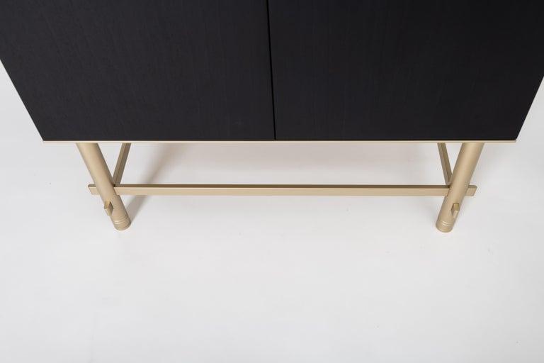 Sarita 2 Colors Luxury Cabinet Metal Structure, Jewel Handles & 2 Wooden Compart For Sale 1