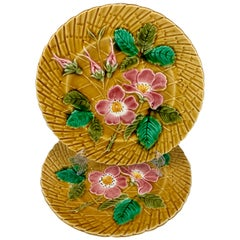 Sarreguemines Wild Roses Mustard Yellow French Faïence Majolica Plate