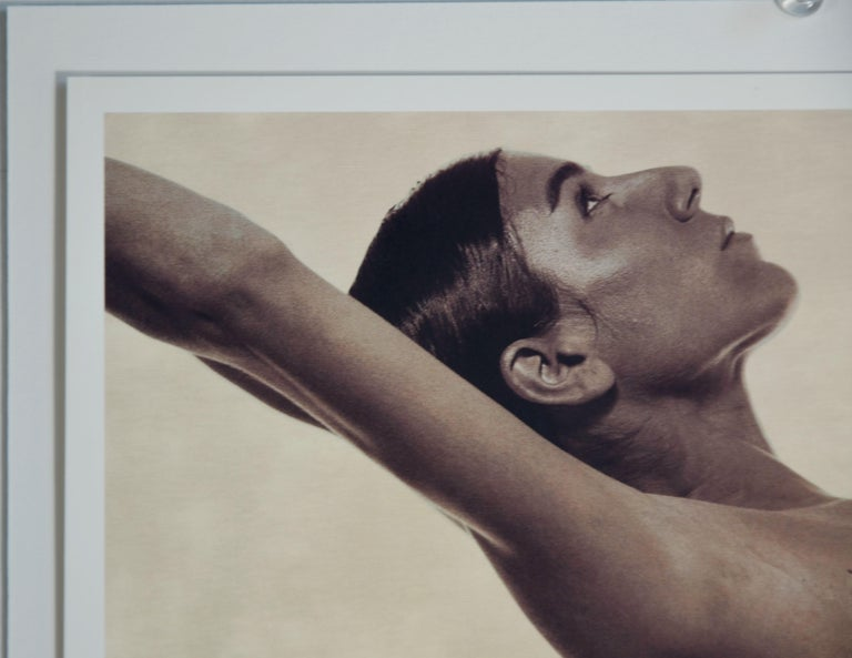Satin Finish Umber Photo-Lithograph by Karl Lagerfeld of