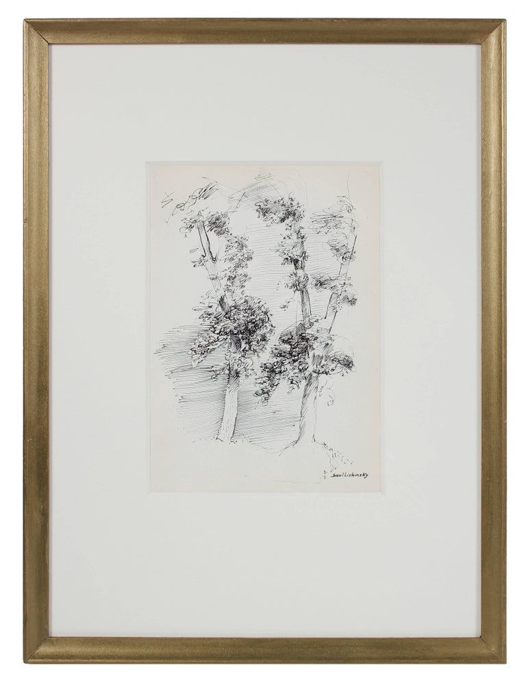 Trees in Black Ink, Mid 20th Century Drawing