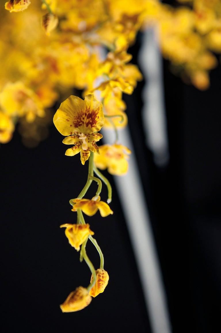 Glass Sayonara Set Arrangement, Flowers, Italy For Sale