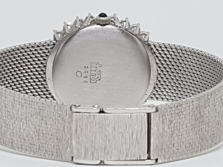 Scaldis 18 Karat White Gold Diamonds Vintage Ladies Watch For Sale 3