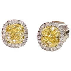 Scarselli Stud Platinum Earrings with 2 Carat Fancy Yellow Diamond Each GIA
