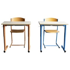 School Desk Set from French Institute of Japan, Tokyo
