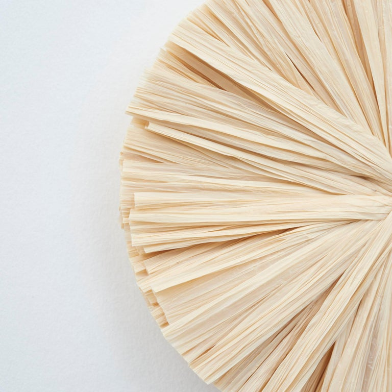 Schumacher Caicos Small Raffia Wall Decoration in Natural, Ten Piece Set In New Condition For Sale In New York, NY