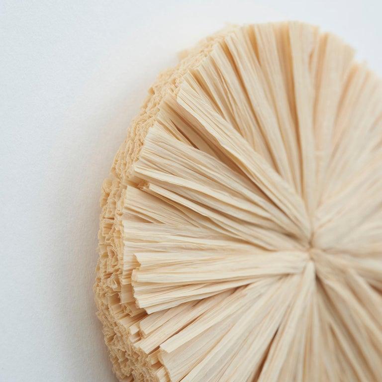 Contemporary Schumacher Caicos Small Raffia Wall Decoration in Natural, Ten Piece Set For Sale