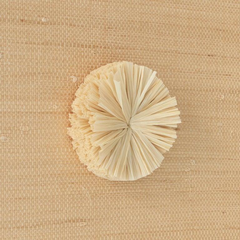 Schumacher Caicos Small Raffia Wall Decoration in Natural, Ten Piece Set For Sale 2