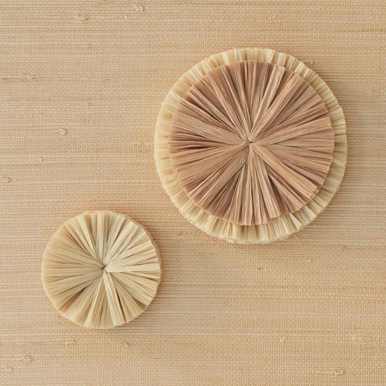 Schumacher Caicos Small Raffia Wall Decoration in Natural, Ten Piece Set For Sale 3