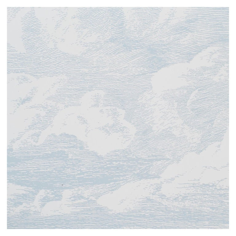 A sumptuous take on a design that debuted in the 1970s, this wide-width, screenprinted cloud pattern has unique depth and an ethereal, mural-like effect.   Since Schumacher was founded in 1889, our family-owned company has been synonymous with