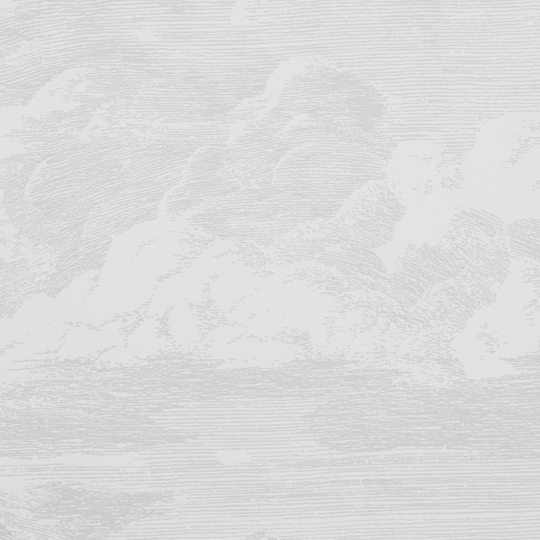 Modern Schumacher Cloud Toile Wallpaper in Quartz For Sale