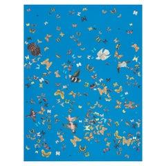 Schumacher x Peg Norriss Queen's Flight Wallpaper in Royal Blue
