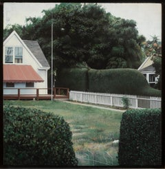 Yard in Provincetown, 1977