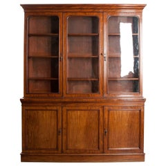 Scottish 19th Century Mahogany Bookcase