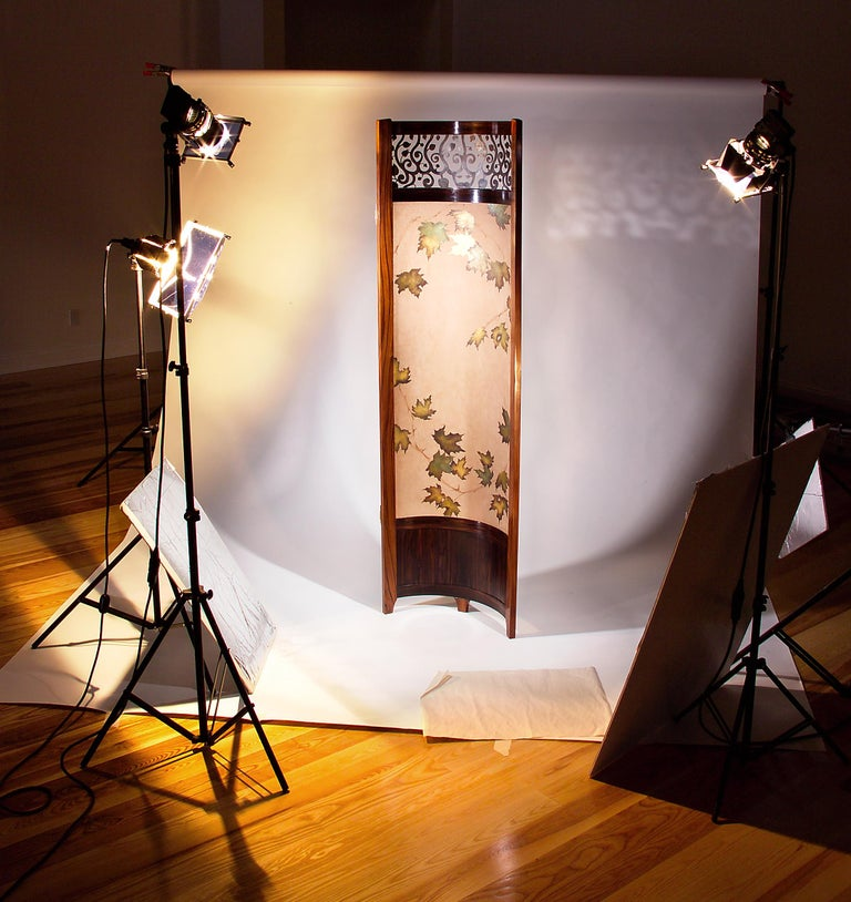 Arc Screen / Room Divider Mixed Media with Exotic Wood, Steel and Tapestry  Two Available Now, in stock.   Bolivian Rosewood, Macassar Ebony, Blackened Steel and Gold Leaf Pattern. This award-winning screen can be used in any room as a functional
