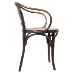 Sculptural Bentwood Armchair by Jacob & Josef Kohn, circa 1900