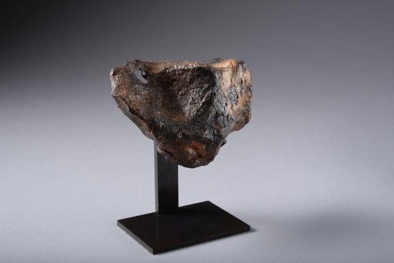Sculptural Canyon Diablo Iron Octahedrite Meteorite For Sale 2