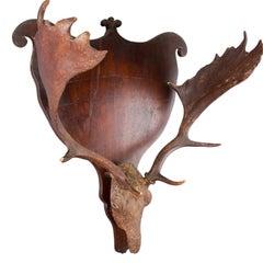 Sculptural Fallow Deer Trophy on Wood Plaque, circa 1860