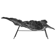 """Sculptural """"Trunk"""" Bench at Cost Price"""