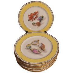 Sea Shell Porcelain Plates French Rousseau, Set of 6 or 12