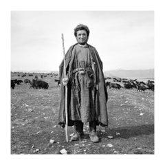 Shepherd, Baglan, 2003