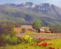 Below Mount Sopris (landscape, barn, mountain, summer)