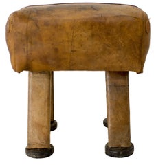 Seat in the Style of Sport Bench