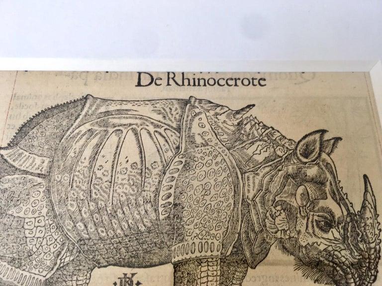 Baroque Sebastian Münster 16th Century Woodcut  Print Animal Exotics For Sale