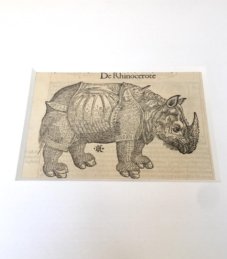 Sebastian Munster(1488-1652)   Woodcut print of exotic animals,