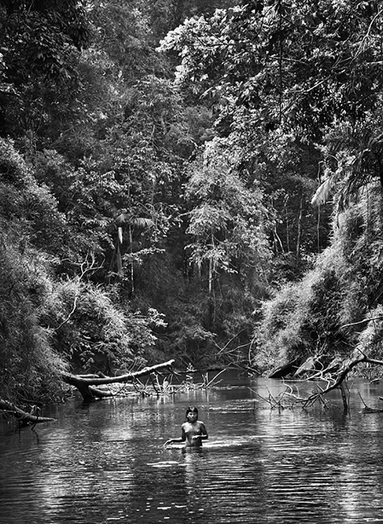 Sebastião Salgado Landscape Photograph - Suruwaha, Amazonas, Brazil