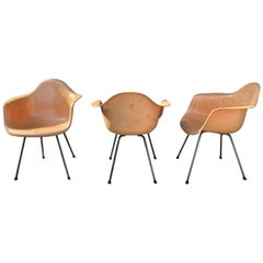 "Second Generation ""Ochre"" X-Base Fiberglass Arm Shell Chairs, Charles Eames"