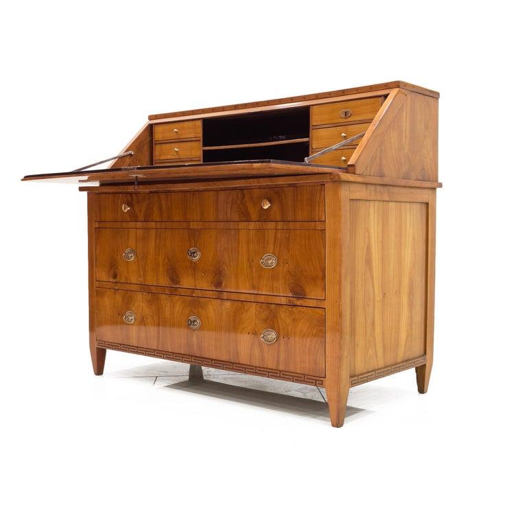 Biedermeier Secretary Desk, Germany, 19th Century For Sale
