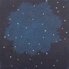 fractal-ssi-1b