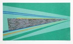 In Flight, Abstract Silkscreen by Seong Moy