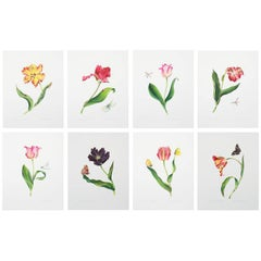 Series of Watercolor Tulip Prints by Anna Chiara Branca