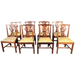Set of 8 Solid Mahogany Chippendale Dining Room Chairs with Damask Slip Seats