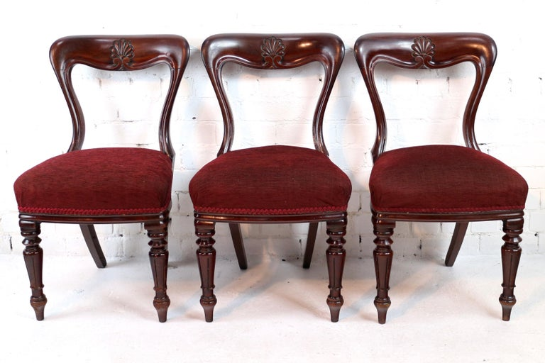 Set of 10 Antique English William IV Mahogany Dining Chairs by J Proctor For Sale 7