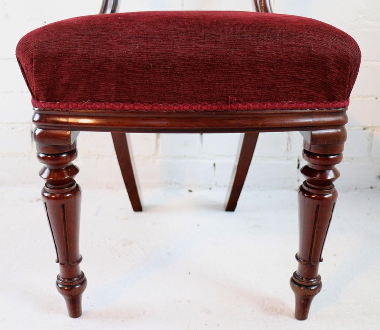 Set of 10 Antique English William IV Mahogany Dining Chairs by J Proctor For Sale 12
