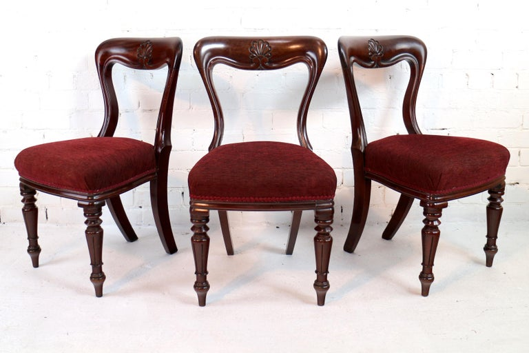 Set of 10 Antique English William IV Mahogany Dining Chairs by J Proctor In Good Condition For Sale In Glasgow, GB