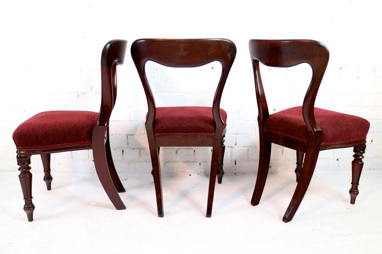 19th Century Set of 10 Antique English William IV Mahogany Dining Chairs by J Proctor For Sale