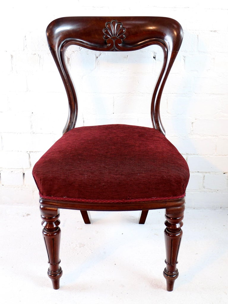 Upholstery Set of 10 Antique English William IV Mahogany Dining Chairs by J Proctor For Sale