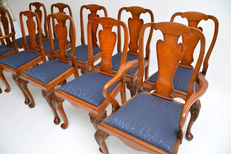 Set of 10 Antique Queen Anne Style Burr Walnut Dining Chairs For Sale 1