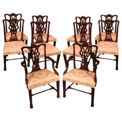 Set of 10 Chippendale Design Mahogany Dining Chairs