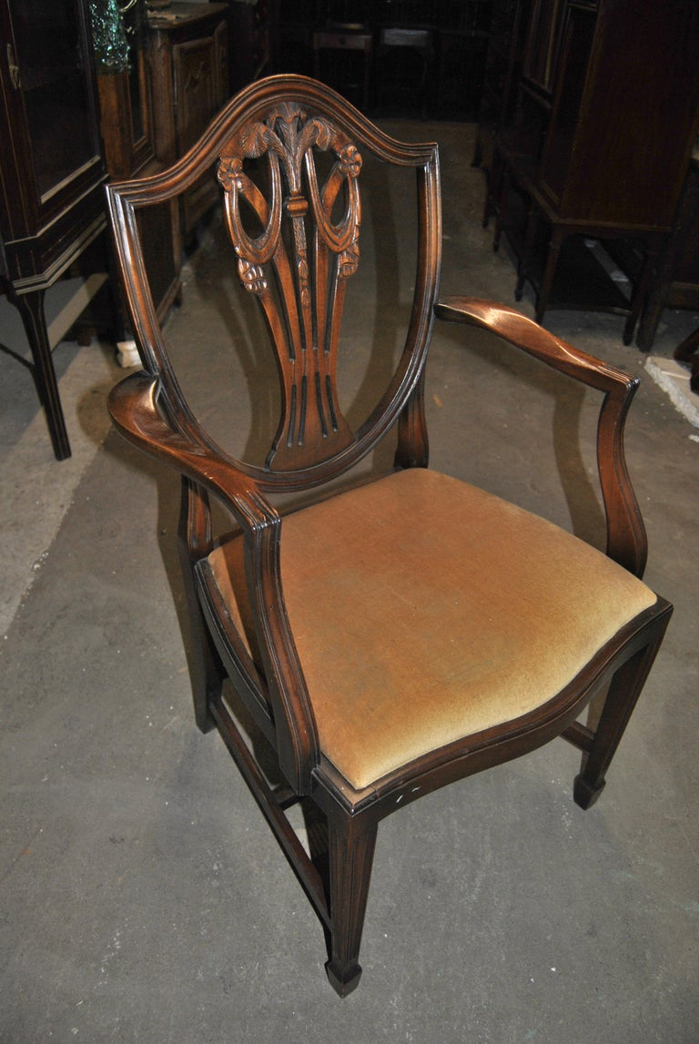 This is a matched set of 12 solid mahogany Hepplewhite style shield back chairs made in England, circa 1950. The set consists of 2 arm chairs and 10 side chairs. They have a beautifully shaped Shield Back with reeded molding. Each is all hand carved