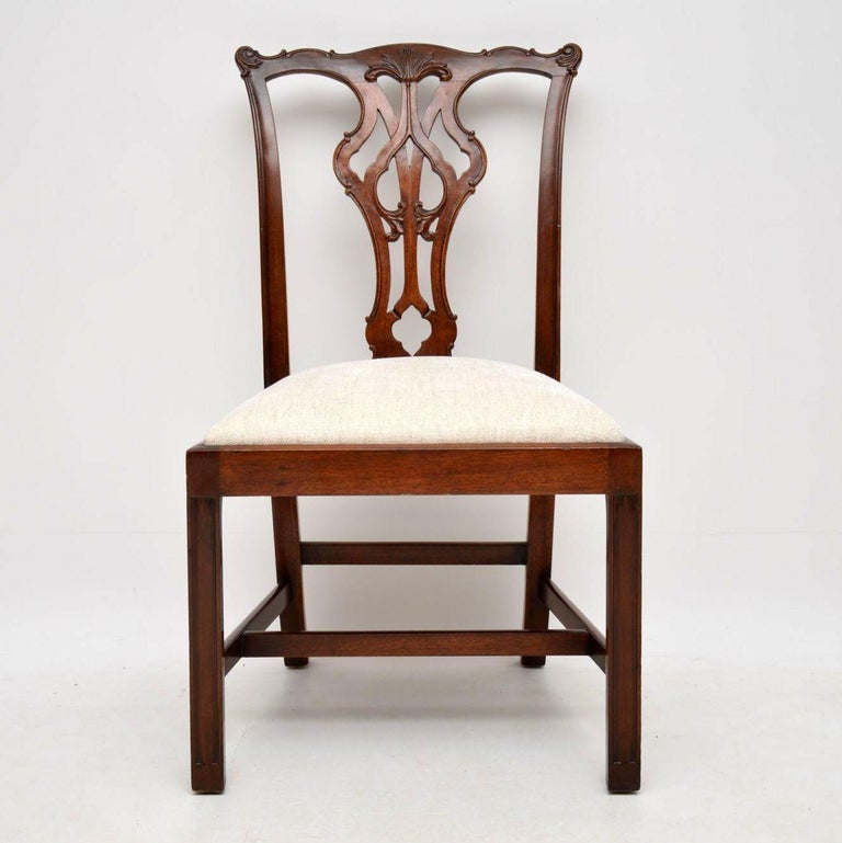 Chippendale Mahogany Dining Room Chairs: Set Of 12 Antique Chippendale Style Mahogany Dining Chairs