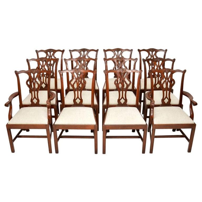 Antique Chippendale Dining Room Furniture: Set Of 12 Antique Chippendale Style Mahogany Dining Chairs